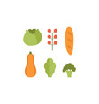 healthy vegetarian food set pumpkin zucchini vector image