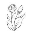 minimalist tattoo organic flowers leaves line art vector image vector image