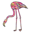 Pink flamingo isolated vector image vector image