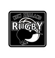 rugby ball kiwi new zealand vector image vector image