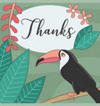 thank you greeting card with toucan bird vector image vector image