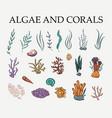algae coral and sea plants set vector image