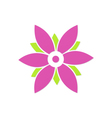 beauty flower abstract geometry logo vector image