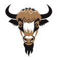 head of bison vector image vector image