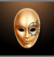 volto golden mask with ornately lace vector image vector image