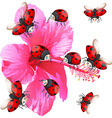 Ladybugs flying around the flower vector image