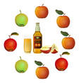 apple cider set vector image