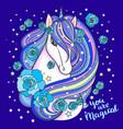 believe in magic a beautiful rainbow unicorn vector image vector image