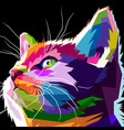 close up of cool cat vector image vector image
