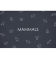 Mammals Thin Line Icons vector image