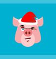 santa pig winks emoji jolly piggy christmas vector image vector image
