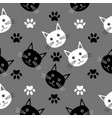 seamless cartoon texture with the heads of cats vector image vector image