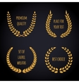 Set of golden laurel wreath on dark background vector image