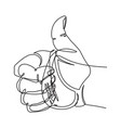 thumbs up continuous line graphic vector image