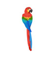 tropical bird isolated vector image vector image