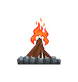 burning bonfire on a white vector image vector image