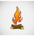 Fire burning on the wood design vector image
