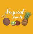 juicy tropical fruits vector image vector image