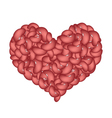 Kidney Beans Forming in A Heart Shape vector image