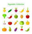 stylish design vegetable isolated icon set vector image