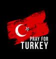 stylized turkey flag pray for turkey vector image