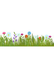 summer green grass and flowers garden plants and vector image vector image