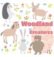 Woodland creatures vector image