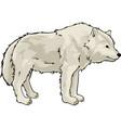 cartoon white wolf vector image