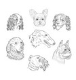 dog breed portraits hand drawn sketches vector image