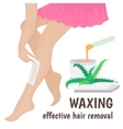 hair removal vector image vector image