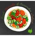 Hand Drawn Salad vector image