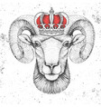 hipster animal ram or mouflon in crown vector image vector image