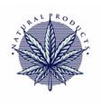 leaf marijuana vintage style vector image vector image