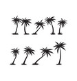 palm tree icon template vector image vector image