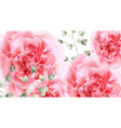 pink roses watercolor background top view vector image vector image