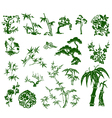 chinese bamboo plant vector image