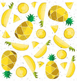 Colorful of pineapple slices vector image vector image