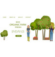 farmers collecting apple harvest fall vector image vector image