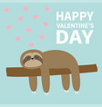 happy valentines day sloth sleeping on tree vector image