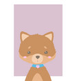 pomeranian dog art vector image vector image