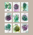 succulents mini banners cards set vector image vector image