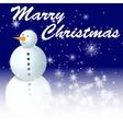 snowman in night vector image