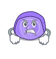 angry blueberry roll cake mascot cartoon vector image