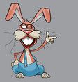 cartoon cheerful hare shows with a finger vector image vector image