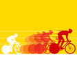 Cyclist in the bicycle race vector image vector image
