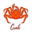 japanese spider crab design element for logo vector image