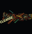Master cleanse journal weight loss success