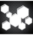 Metal circular grid vector image vector image