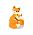 mother fox hugging her baby fox vector image