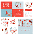 Scrapbook Design Elements Vintage Christmas Birds vector image vector image